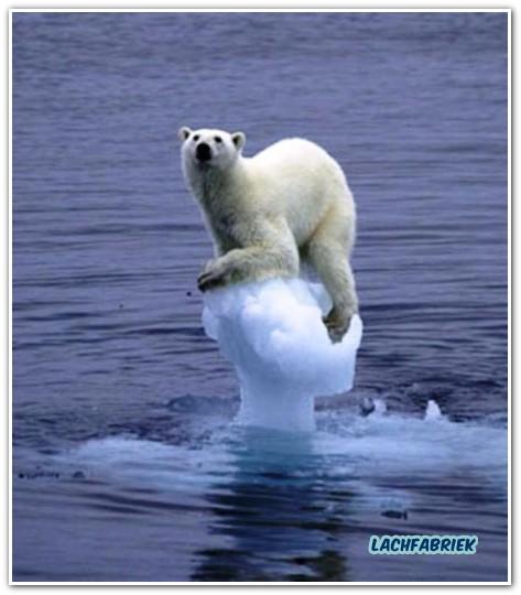 20100819_195626_opwarming-van-de-aarde