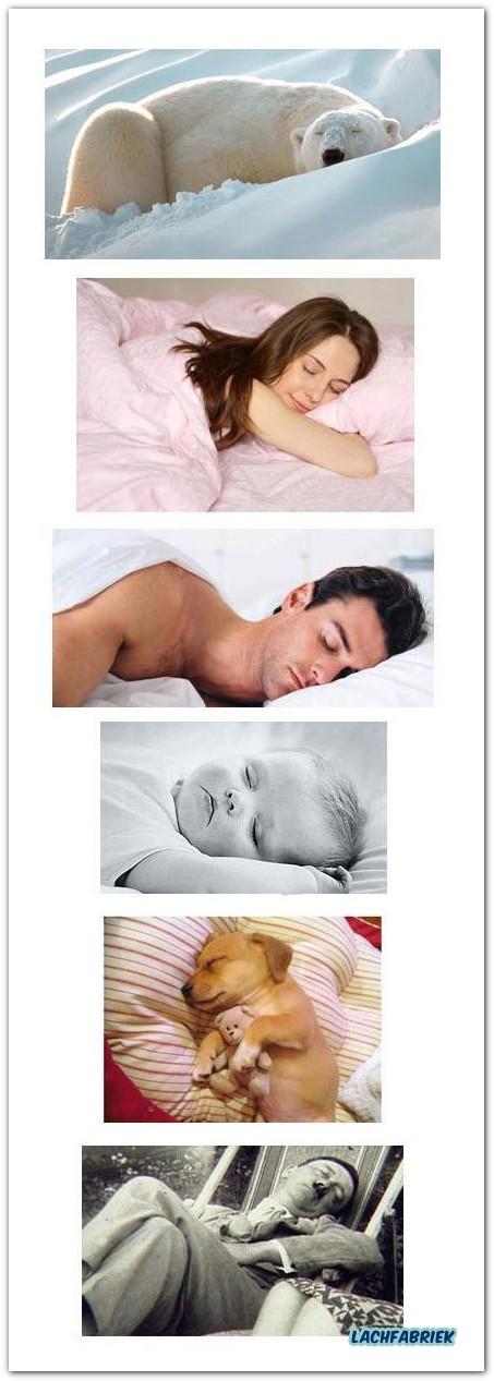 20101014_201128_slapen-maakt-iedereen-lief
