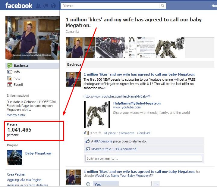 FB-megatron